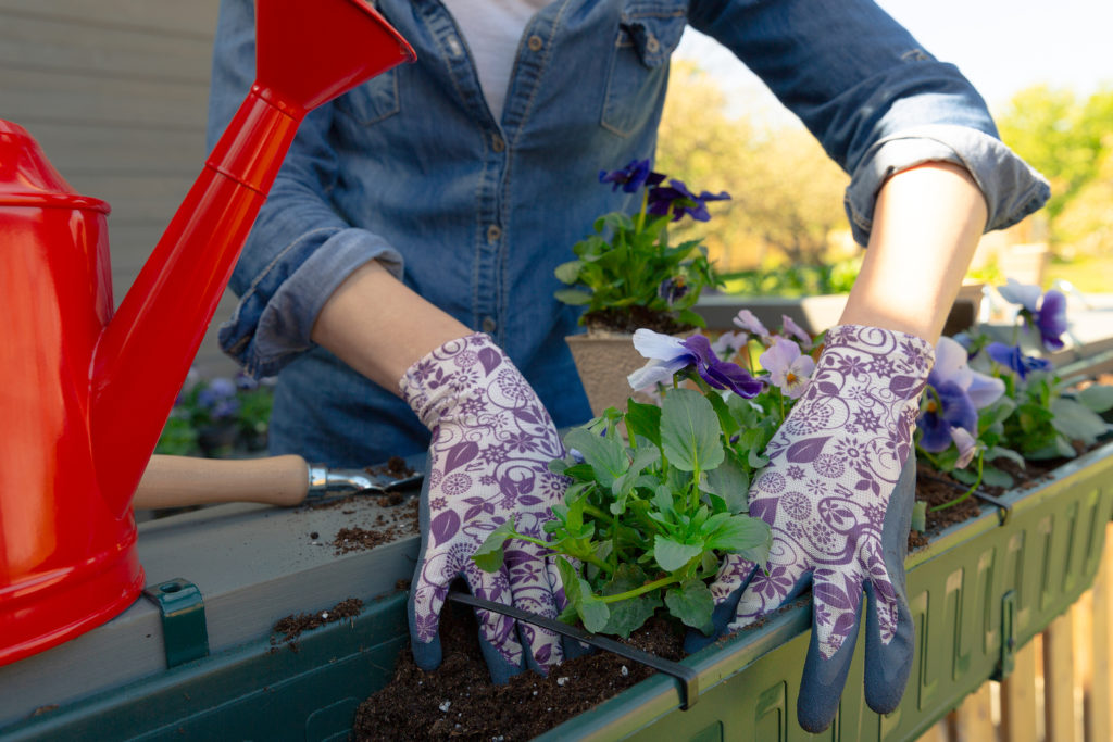 Spring and summer gardening for your San Diego condo